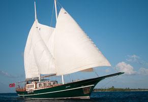 Surf Boat Dream Voyager