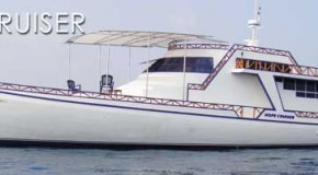Surf Boat Hope Cruiser
