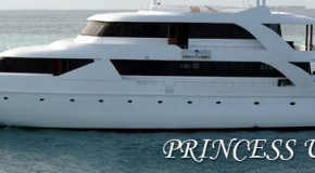 Surf Boat Princess Ushwa