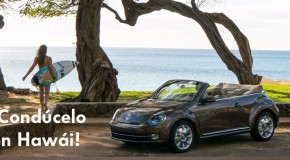 En Hawaii con tu Volkswagen Beetle