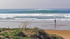 HOMIES SURF CAMP